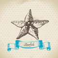 Starfish hand drawn retro illustration Stock Photography