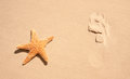 Starfish With Human Footprint Stock Photography