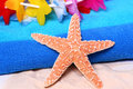 Starfish Lei Stock Photography