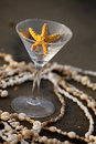 Starfish martini Stock Image