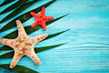 Starfish and palm leaves lying on a blue wooden background . There is a place for labels.