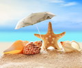 Starfish with parasol and shells on the beach Royalty Free Stock Photo