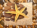 Starfish and  pebble on the sand Royalty Free Stock Photo