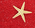 Starfish in red sand Royalty Free Stock Photography