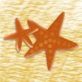 Starfish in the sand for concept design. Cute summer pattern. Sand sea ocean. Tropical relax. Cartoon style illustration. Ocean,