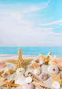 Starfish and sea shells Royalty Free Stock Photo