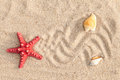 Starfish and sea shells with sand Royalty Free Stock Photo