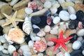 Starfish, seashell, and colorful pebble stones Royalty Free Stock Photo