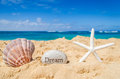 Starfish with seashell and sign Royalty Free Stock Photo