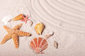 Starfish and Seashells Stock Photography