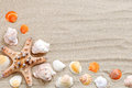 Starfish, seashells, sea stones and palm leaves lying on the sea sand . There is a place for labels.