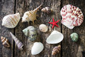 Starfish, seashells, snail shell on an old wooden table Royalty Free Stock Photo