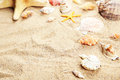 Starfish and shells on a sand beach, close up Royalty Free Stock Photo