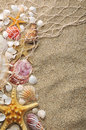 Starfish and shells on sand near sea in summer Royalty Free Stock Images