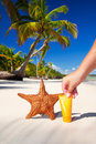 Starfish and sun protection tube in hand Royalty Free Stock Photography