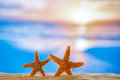Starfish with sunrise ocean beach and seascape shallow dof Royalty Free Stock Image
