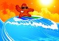 Starfish on surf