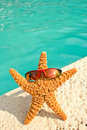 Starfish on Vacation by Pool Royalty Free Stock Photography