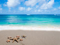 Starfishes on the sandy beach six by ocean s wave Royalty Free Stock Images
