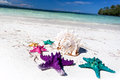Starfishes in tropic paradise travel vacation concept colour on white beach tourism Stock Photo