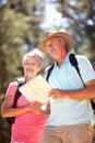 Starsza pary czytania mapa na kraju spacerze Obraz Royalty Free