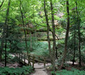 Starved rock trail Stock Photo