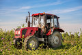 A stationary red tractor is parked on the edge of a field Royalty Free Stock Photo
