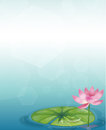 A stationery with a waterlily and a pink flower illustration of Stock Photography