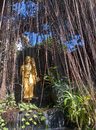 Statue of a buddha wandering through a forest golden tropical Royalty Free Stock Photography
