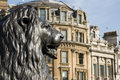 Statue de lion, grand dos de Trafalgar Photo stock