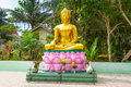 Statue of golden Buddha at the jungle Royalty Free Stock Images