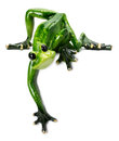 Statue of green frog on the white background Royalty Free Stock Photo