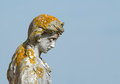 Statue with lichen growth of different types of Royalty Free Stock Photos