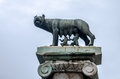 Statue wolf kormyschey two infants a symbol of rome capital of italy Royalty Free Stock Photos
