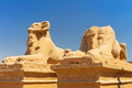 Statues of ram headed sphinxes in karnak temple ancient luxor Royalty Free Stock Photography
