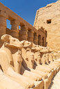 Statues of ram headed sphinxes in karnak temple ancient luxor Stock Photos