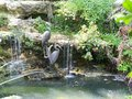 Statues of two Great Blue Herons by a pool Royalty Free Stock Photo