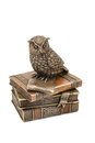 Statuette owl sitting on books bronze a pile of isolated a white background Stock Photo