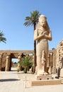 Staty av Ramses II på det Karnak tempelet. Royaltyfria Bilder