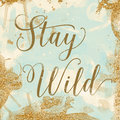 Stay wild vintage background texture that reads in mint cream and gold Royalty Free Stock Photo