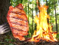 Steak on a fork in the background bonfire in the forest Royalty Free Stock Photo