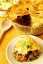 Steak and kidney pie Royalty Free Stock Photo