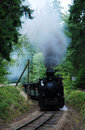 Steam train czech republic narrow gauge railway in southern bohemia Royalty Free Stock Images