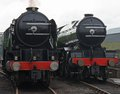 Steam Train Engines. Stock Images