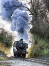 Steam train puffing along the tracks Stock Photography