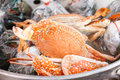 Steamed blue crab Royalty Free Stock Photography