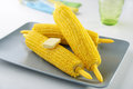 Steamed corn cobs Royalty Free Stock Photo