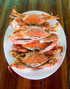 Steamed crab on white dish place on wooden table Stock Photography