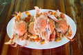 Steamed crab on white dish place on wooden table Royalty Free Stock Photos