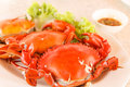 Steamed crap seafood of in red Royalty Free Stock Photos